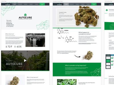 Auto Cure website