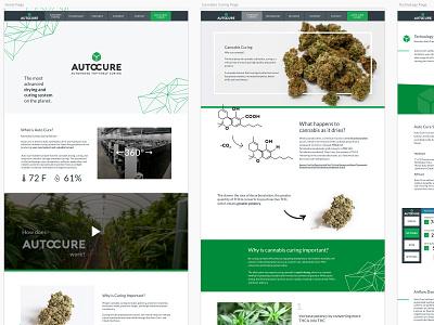 Auto Cure website mockup sketch uid navigation website design website web design