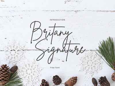Brittany Signature Free Font