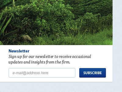 Subscribe header newsletter signup