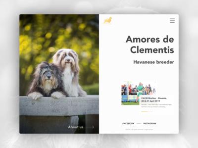 Web Design & Web Development // Amores de Clementis