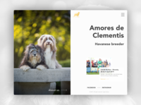 Web Design & Web Development // Amores de Clementis