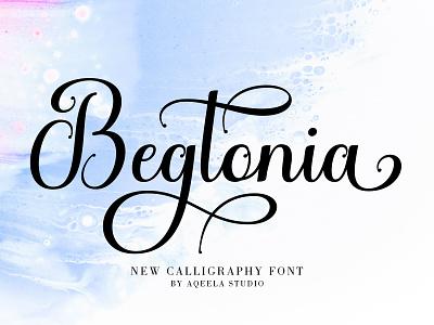 Begtonia love font fun type branding elegant lettering script typography logo design