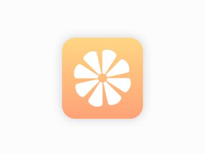 DailyUI #5 Application Icon lemon icon application dailyui