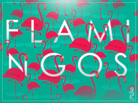 Flamingos Dribbble