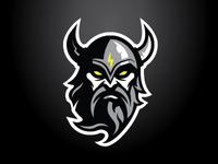 Delaware Thunder Primary Logo