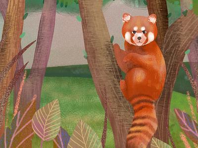 Red Panda childrens book illustration childrens illustration childrens book photoshop art procreate drawing digital art illustration