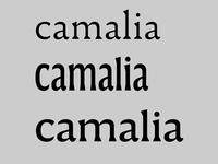 Camalia