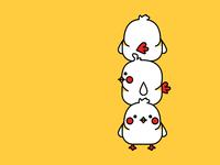 Chicks 🐥