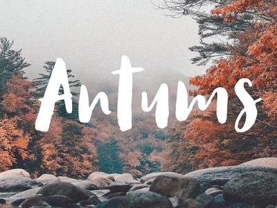 Antums Free Script Font