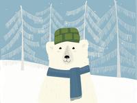 A book about polar bear