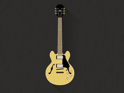 339 Guitar flat guitar illustration