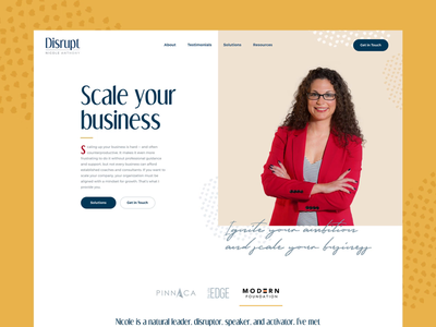 Disrupt - Business Consultant Website services expert growth advice development cv resume biography bio corporate company entrepreneur product design product web design website minneapolis minnesota mn consulting consultant business