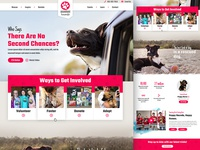 Dog Fostering Website