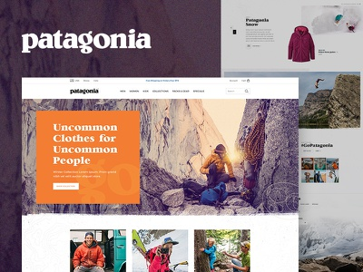 Patagonia Concept mountain snowboard climbing lifestyle store travel surf ski nature retail patagonia clothing shop outdoor apparel ecommerce