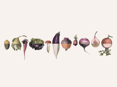 Fruit and veg splices
