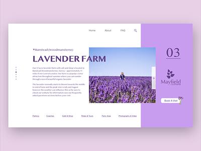 Lavender Farm ingakot london uk minimalistic fresh layout web webdesign graphicdesign design uxui ui uidesign photography purple lavender