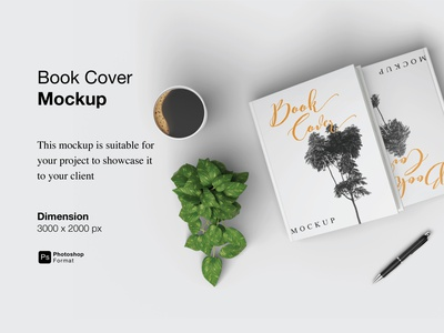 Book Cover Mockup Cover Preview view 3d