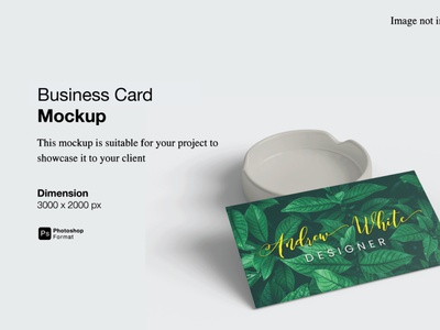 Business Card Mockup Cover Preview stationery