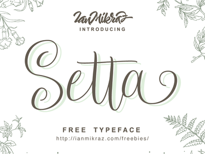 Setta Script Free Typeface  typography lettering calligraphy typeface font freebies free fonts