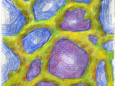 Organic II colored pencil watercolor art watercolor