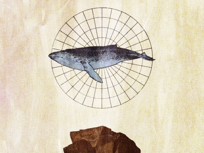 #collageretreat 152. 04/28/2021. grid circular grid diagram humpback whale whale rock surreal weird textured illustration digital illustration digital collage collage collage art collage retreat