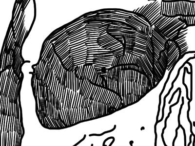 Unfinished skull