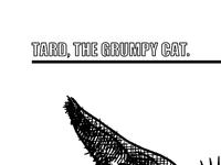Tard, the grumpy cat (print)