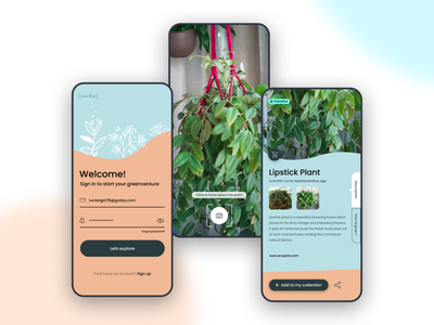 Practice project dribbble ux curvy plants figma dailyui uidesign design