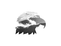 Eagle Thing