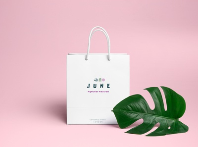 june takeaway bag