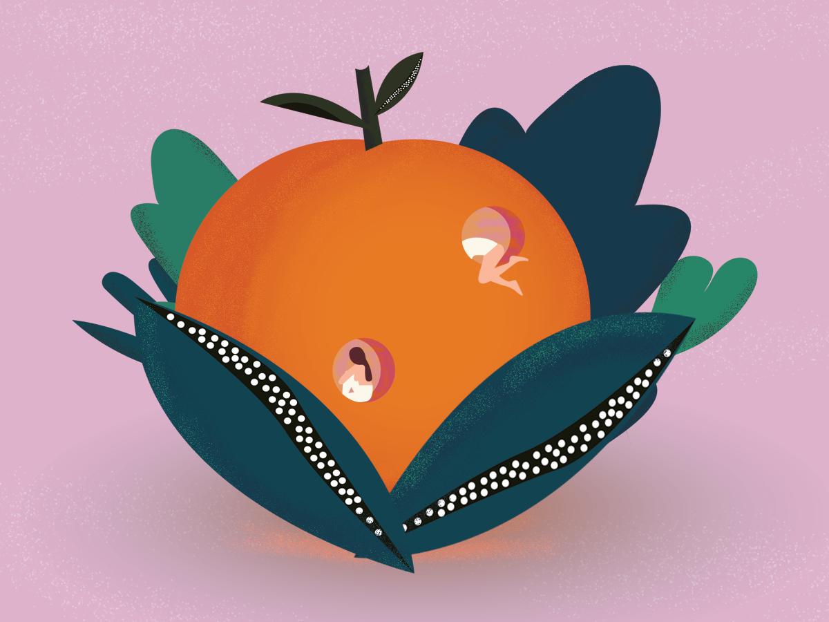 Fruit discovery flower summer women branding illustration textures gradient