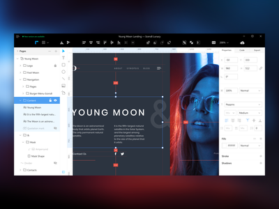 Lunacy App application windows ux ui desktop app interface editor