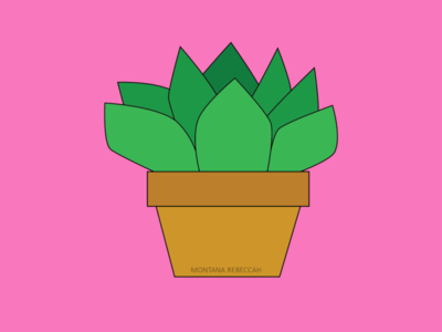 potted plant illustrator digital illustration digital art vector illustration