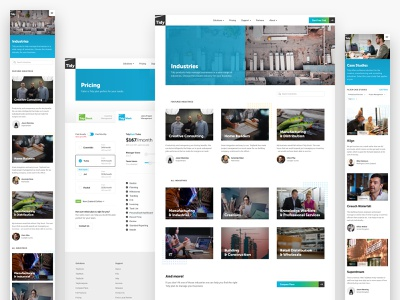 Tidy website redesign 2 pricing blue grid saas software new-zealand responsive web