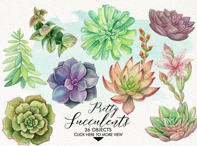 Watercolor Pretty Succulents