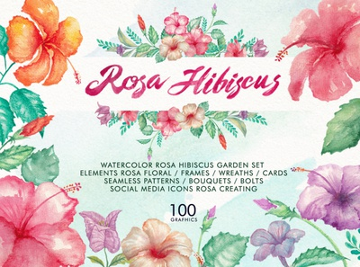 Watercolor Hibiscus Flowers