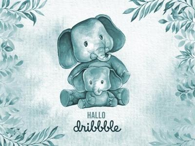 hallo dribbble