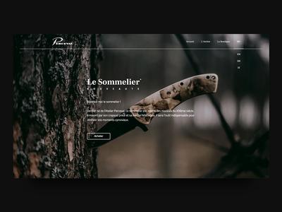 Perceval Landing Page adobe xd design interface ux ui website web