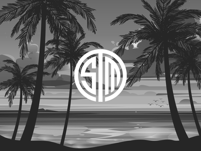 Team SoloMid Summer branding design vector summer travel concept illustration esports