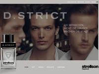 04 D Strict
