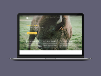 Wildlife Trust Website Concept pt.1