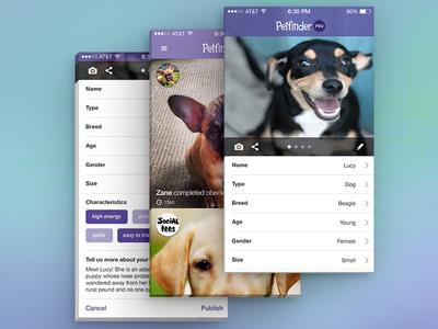 Petfinder Intake Concept for iOS
