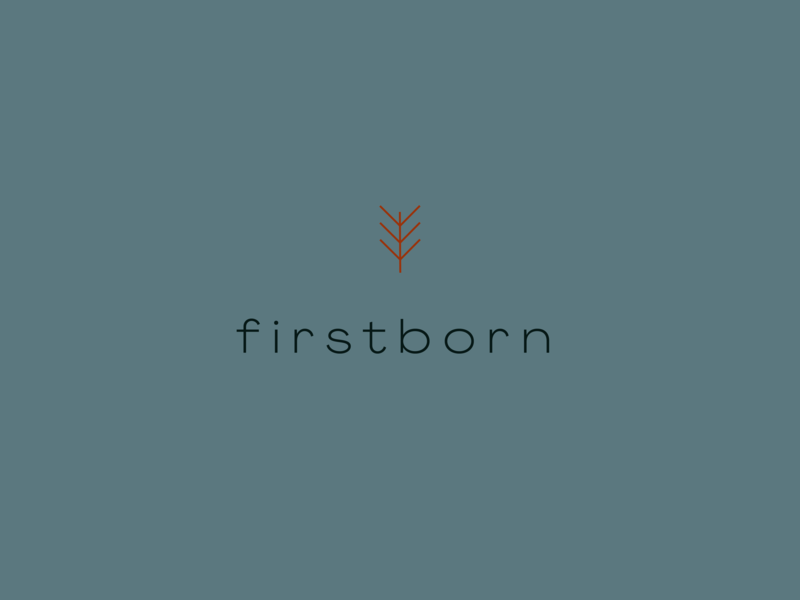 firstborn logo icon prague geometric color typography vector design plant branding logo identity shape graphic illustration