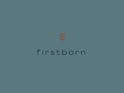 firstborn logo icon prague geometric color typography vector design plant branding logo identity shape graphic illustration