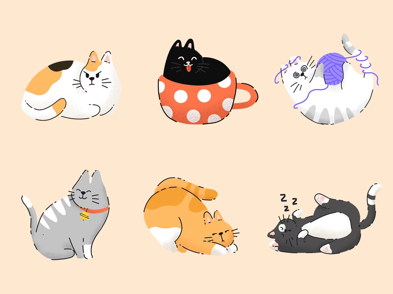 Cats & Kitties stickers icons flat procreate cat illustration design character funny animals cute pets cats