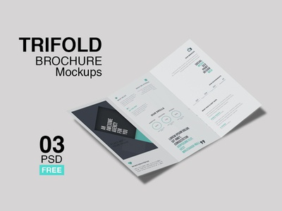 Trifold Brochure Mockup For Business