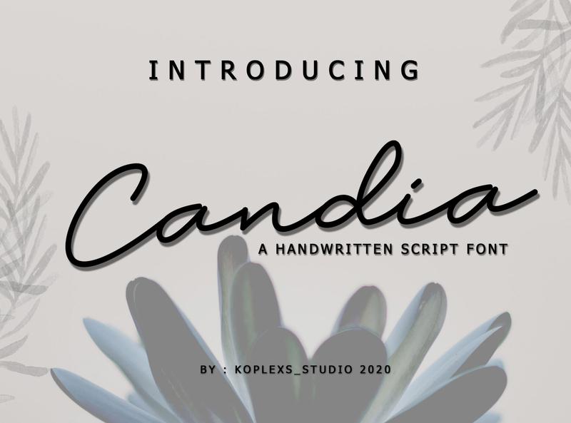 Candia Sript Font handwritten handwriting logos typeface quotes wedding invitation brush