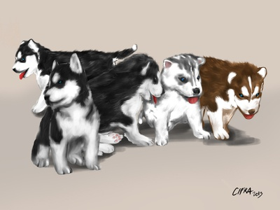 iPad Art: Husky Puppies
