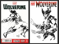 Wolverine ink illustration